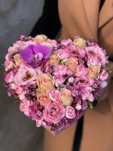 Ziedu kaste VERONICA