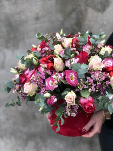 Ziedu kaste NICOLLETA