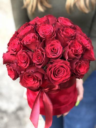 Ziedu kaste RED VELVET