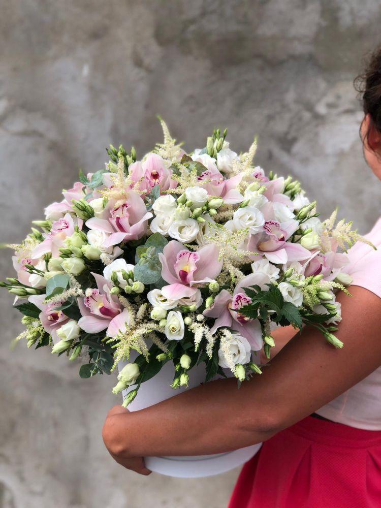 Ziedu kaste STELLA