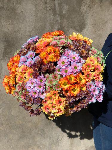 Ziedu pušķis RAINBOW CHAMOMILE