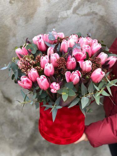 Ziedu kaste PINK SPRING